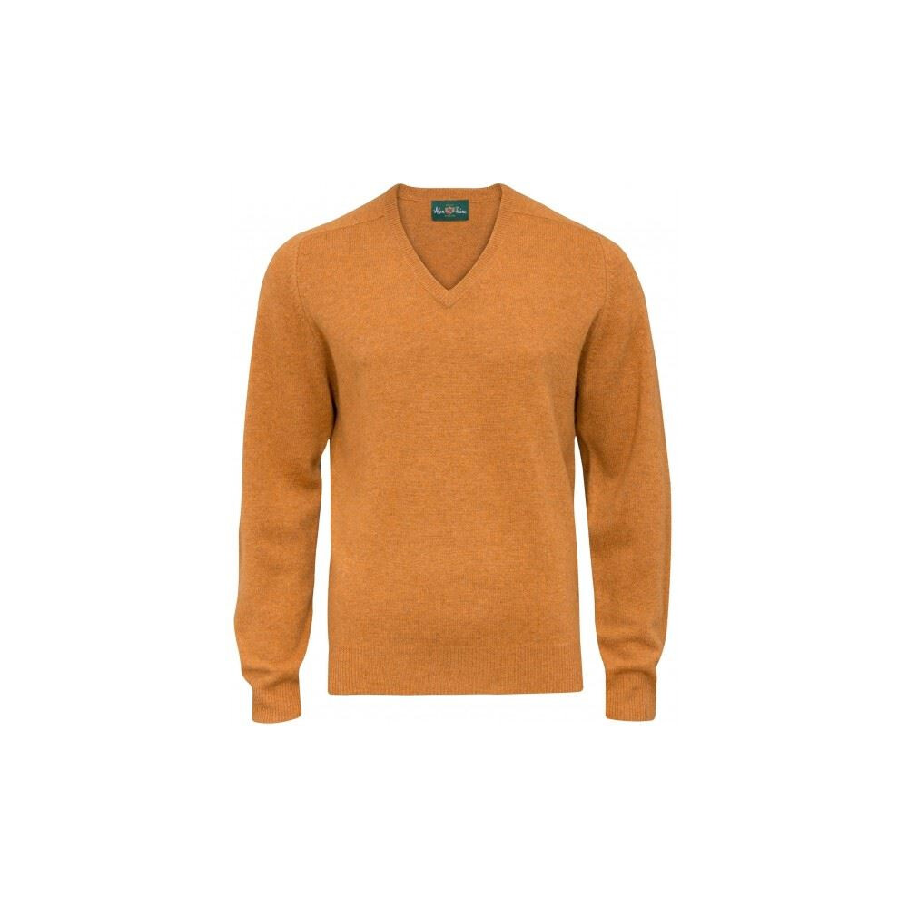 Alan Paine Burford Long Sleeve V-Neck