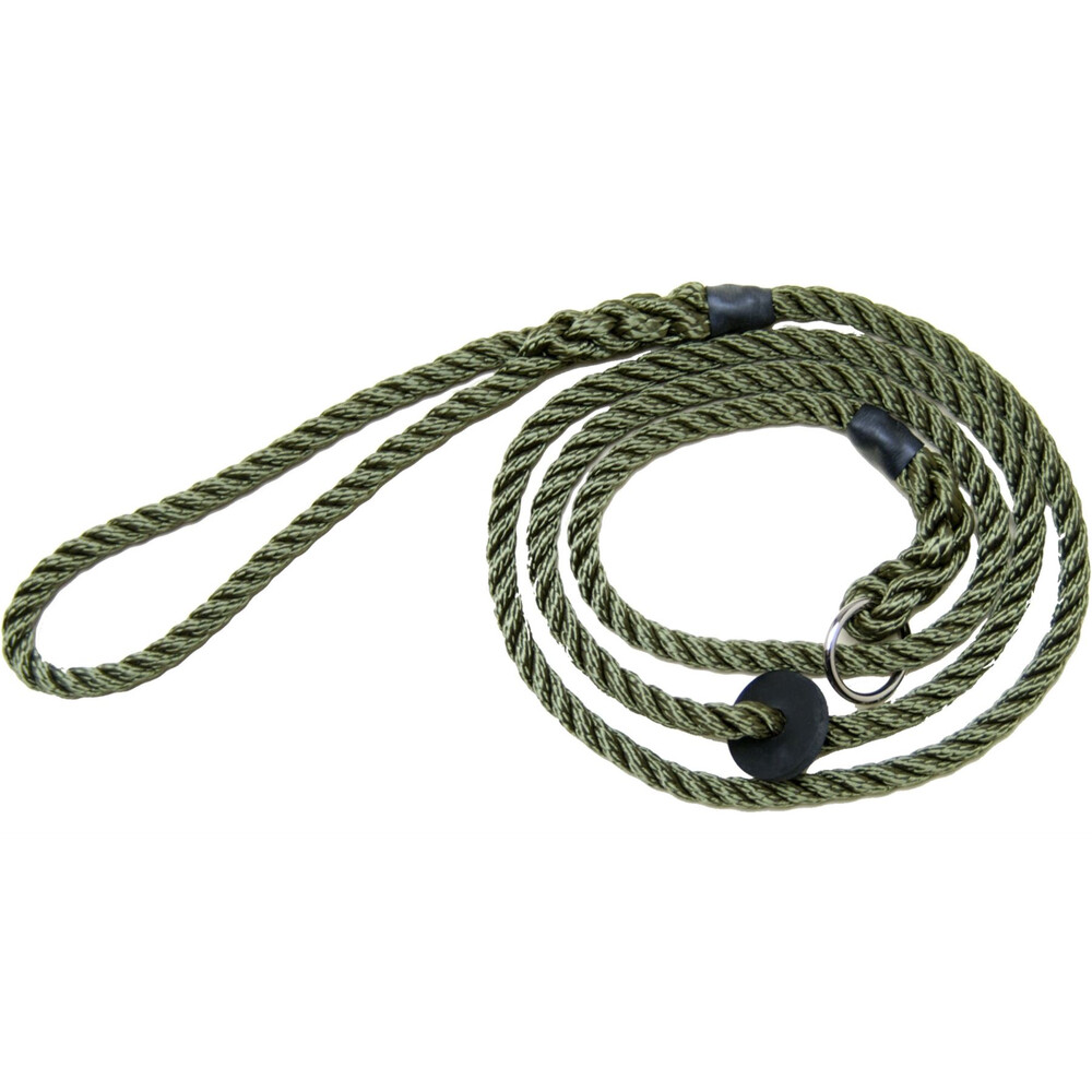 Bisley Deluxe Dog Slip Lead Green