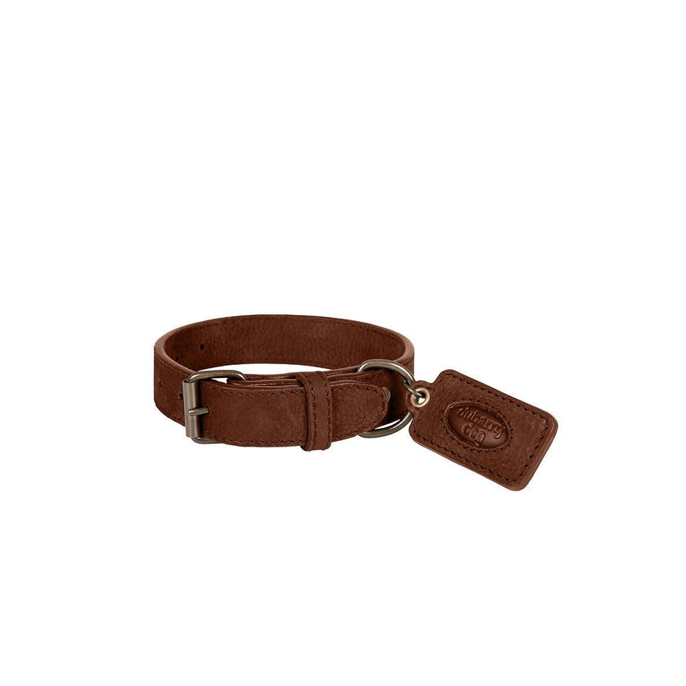 Dubarry Glenbrook Dog Collar