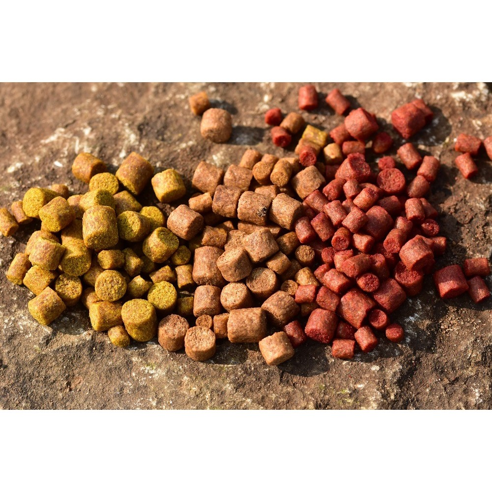 Dynamite Baits Big Fish River Pellets - Cheese & Garlic - Mixed 4mm, 6mm & 8mm Brown