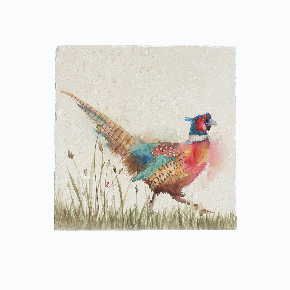 Kate Of Kensington Kate of Kensington Medium Platter - Pheasant in Grass