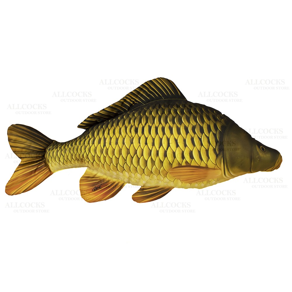 Gaby Fish Pillow - Common Carp N/A
