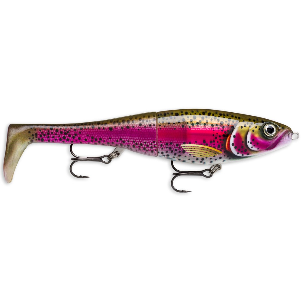Rapala Rapala X-Rap Peto 14 in Live Rainbow Trout