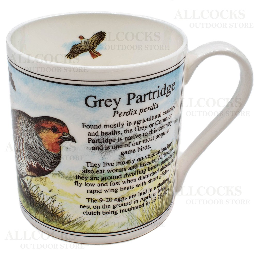 Ashley Fine China China Mug - Grey Partridge - White