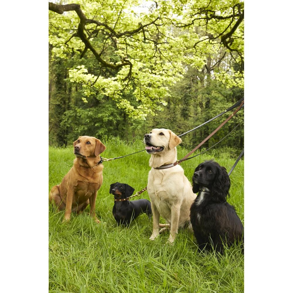 Holland Cooper Classic Dog Lead Black