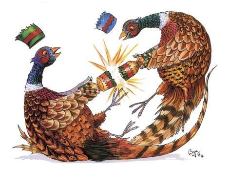Countryside Greetings Countryside Greetings Bryn Festive Pheasants Christmas Card - Pheasant