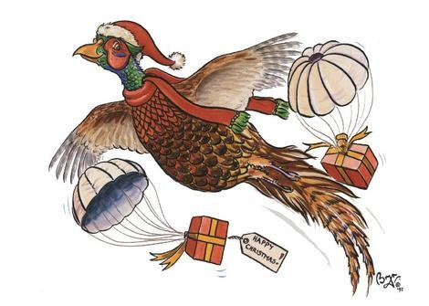 Countryside Greetings Countryside Greetings Bryn Pheasant Present Christmas Card - Pheasant